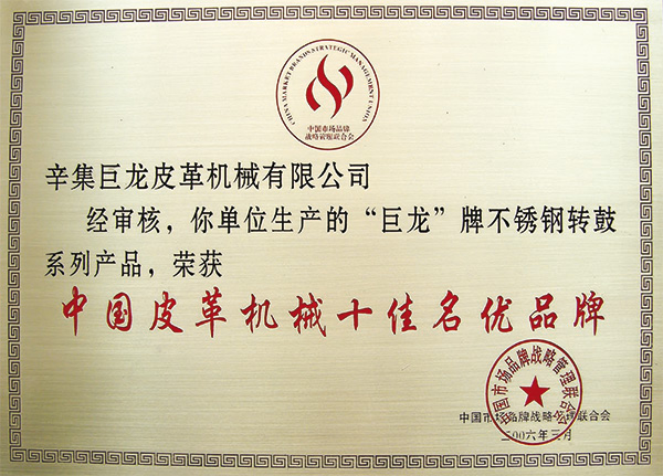 China top ten famous brand leather machinery08